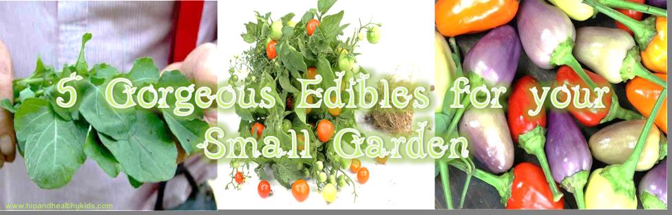 5 Gorgeous Edibles for your Small Garden